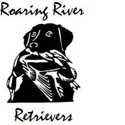 Roaring River Retrievers