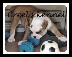 creelkennel